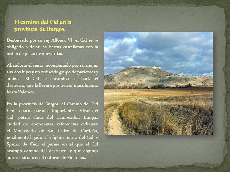 Desterrado por su rey Alfonso VI, el Cid se ve obligado a dejar las tierras castellanas con la orden de plazo de nueve días. Abandona el reino acompañ