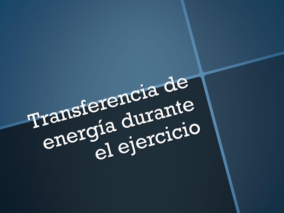 Transferencia de energía durante el ejercicio