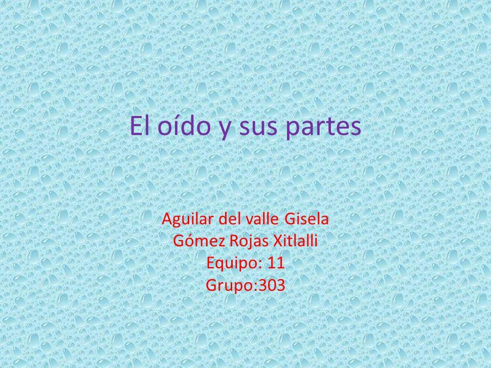 El oído y sus partes Aguilar del valle Gisela Gómez Rojas Xitlalli Equipo: 11 Grupo:303