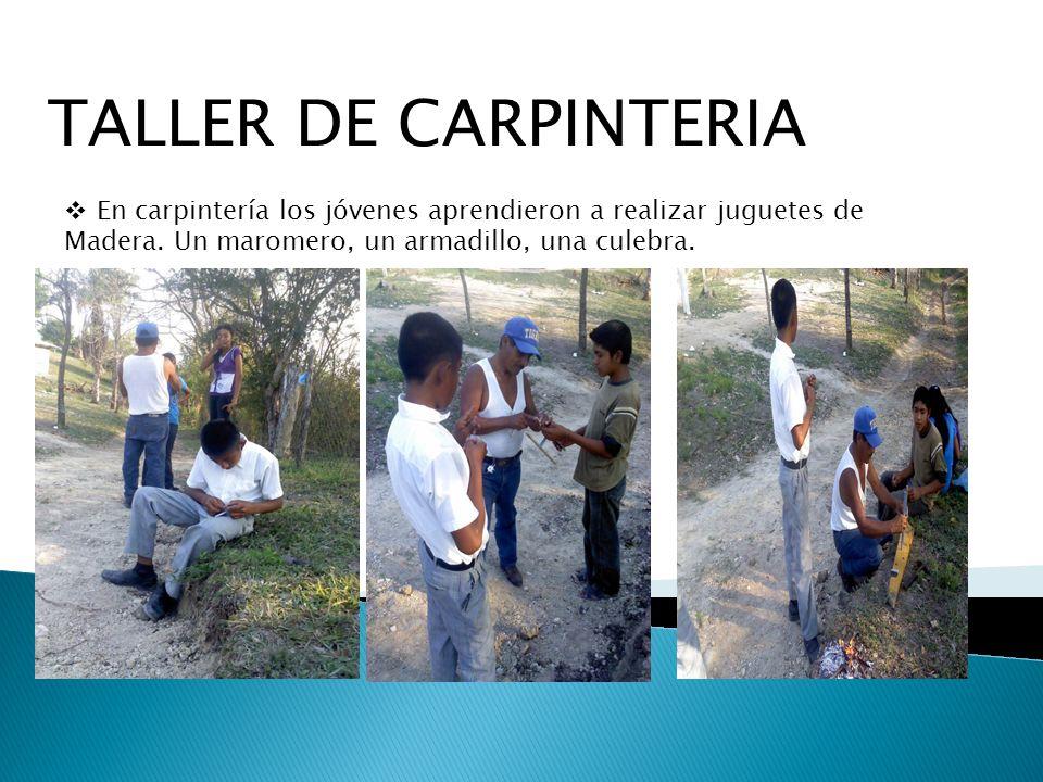 TALLER DE CARPINTERIA En carpintería los jóvenes aprendieron a realizar juguetes de Madera. Un maromero, un armadillo, una culebra.
