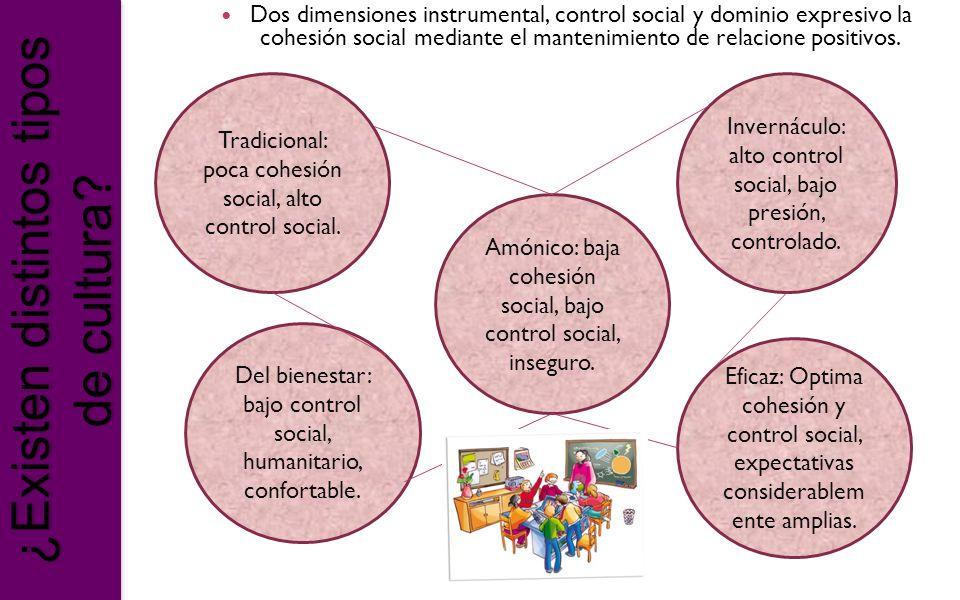 ¿Existen distintos tipos de cultura? Dos dimensiones instrumental, control social y dominio expresivo la cohesión social mediante el mantenimiento de