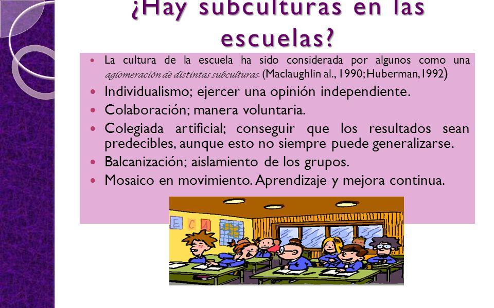 ¿Hay subculturas en las escuelas? La cultura de la escuela ha sido considerada por algunos como una aglomeración de distintas subculturas. (Maclaughli