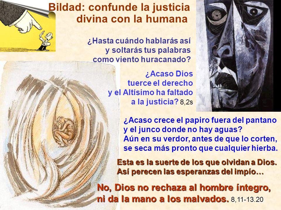 ¿Acaso Dios tuerce el derecho y el Altísimo ha faltado a la justicia? 8,2s Esta es la suerte de los que olvidan a Dios. Así perecen las esperanzas del