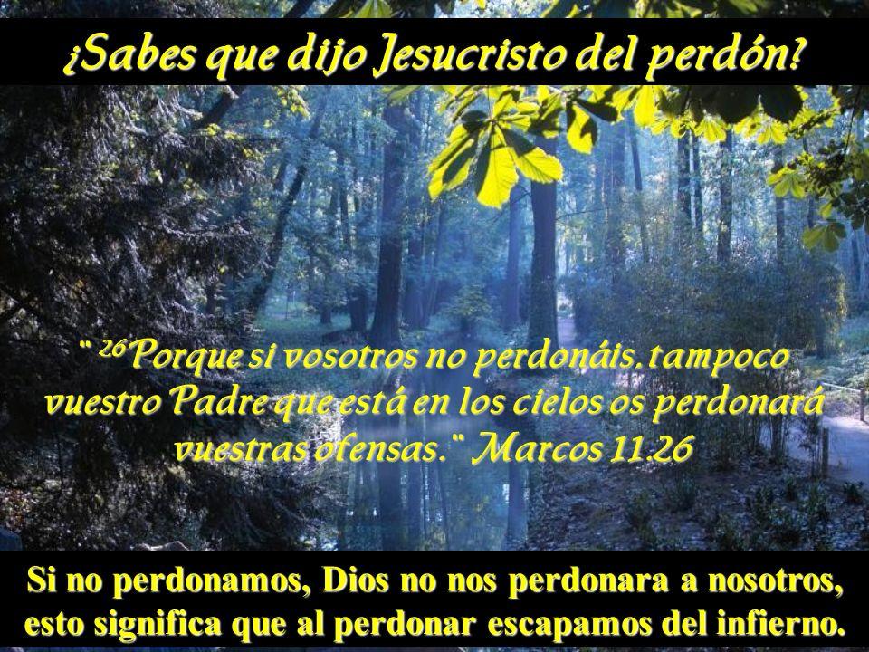 ¿Sabes que dijo Jesucristo del perdón? ¨ 26 Porque si vosotros no perdonáis, tampoco vuestro Padre que está en los cielos os perdonará vuestras ofensa