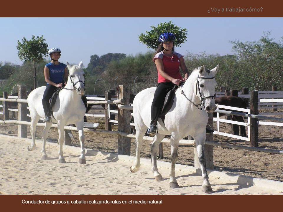 ¿Voy a trabajar cómo? Conductor de grupos a caballo realizando rutas en el medio natural