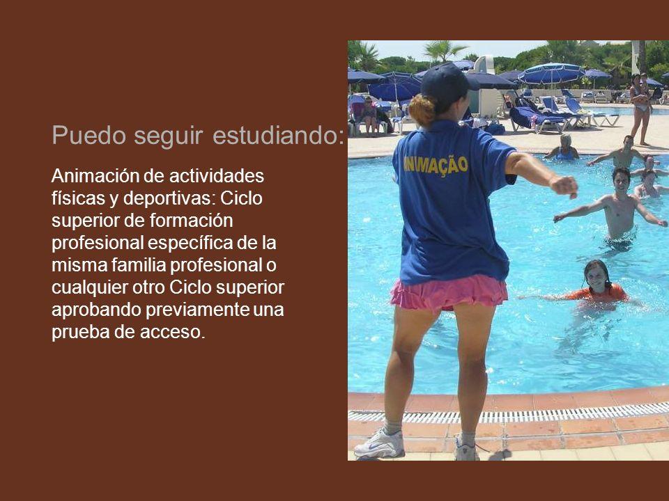 Animación de actividades físicas y deportivas: Ciclo superior de formación profesional específica de la misma familia profesional o cualquier otro Cic