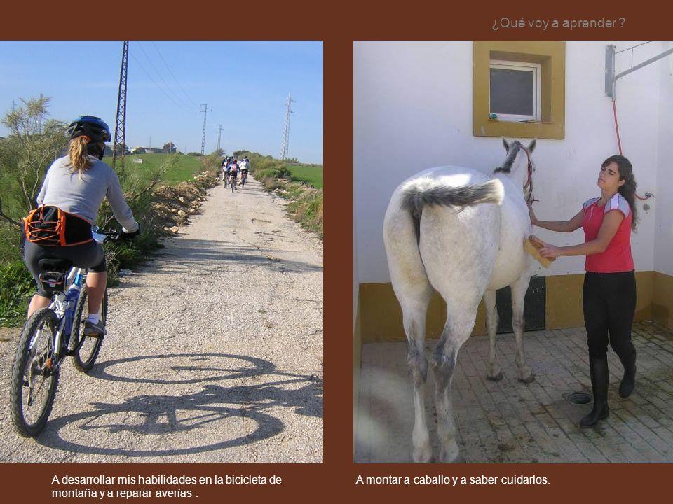 A montar a caballo y a saber cuidarlos. ¿Qué voy a aprender ? A desarrollar mis habilidades en la bicicleta de montaña y a reparar averías.