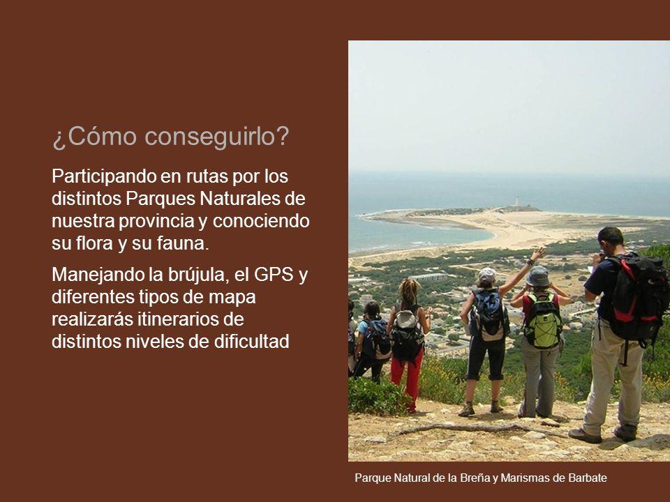 Participando en rutas por los distintos Parques Naturales de nuestra provincia y conociendo su flora y su fauna. Manejando la brújula, el GPS y difere