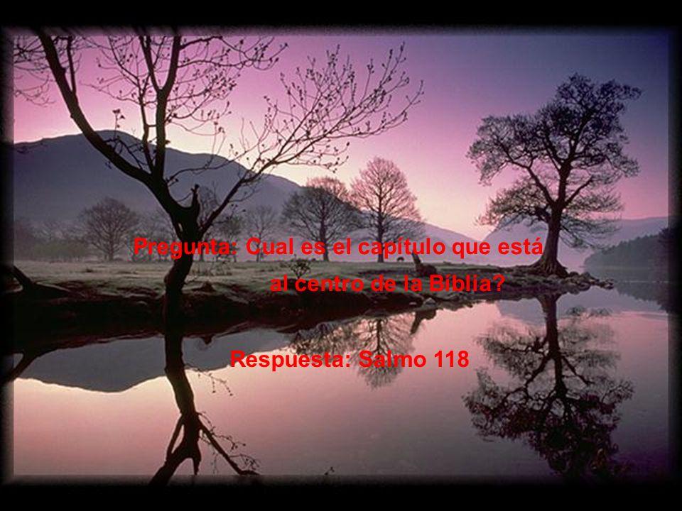 Hay 594 capítulos antes del Salmo 118 Hay 594 capítulos después del Salmo 118 Al sumar esos números tendremos 1188.