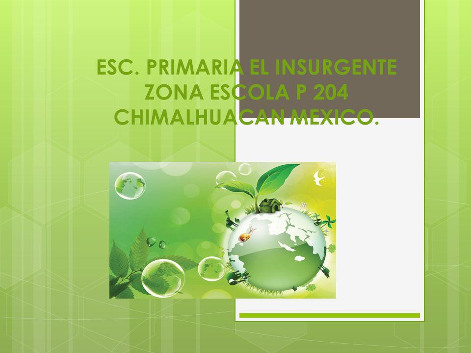 ESC. PRIMARIA EL INSURGENTE ZONA ESCOLA P 204 CHIMALHUACAN MEXICO.