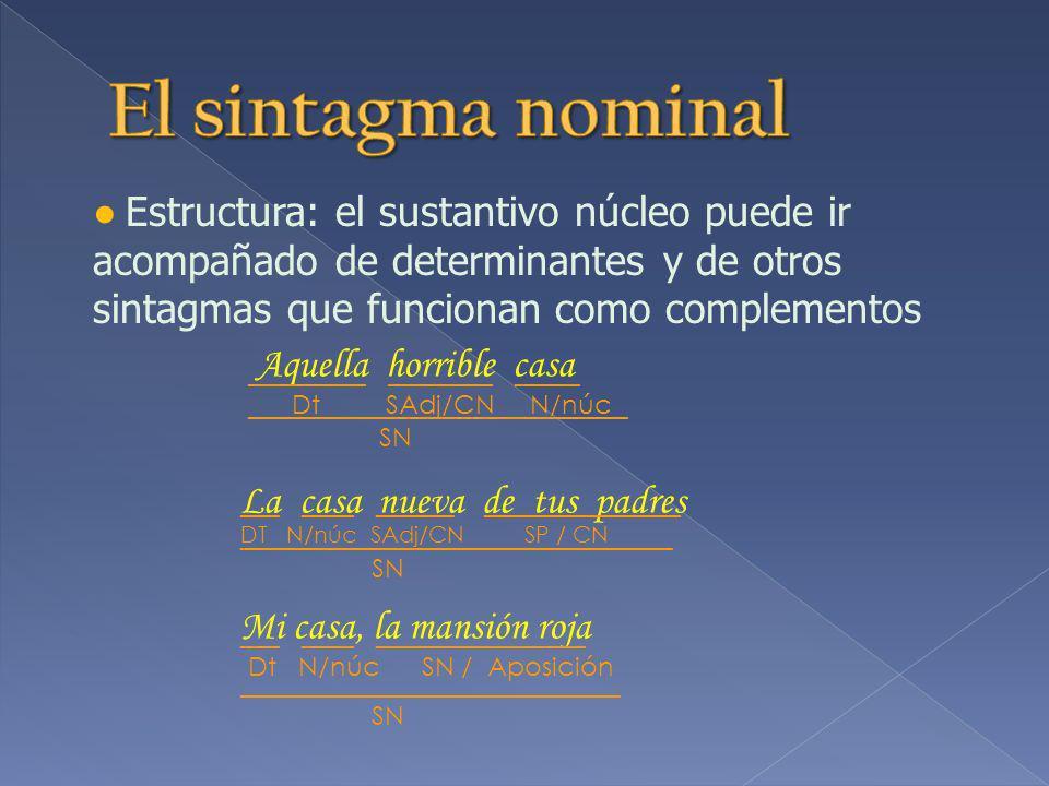 Estructura: el sustantivo núcleo puede ir acompañado de determinantes y de otros sintagmas que funcionan como complementos Aquella horrible casa _________ ________ _____ Dt SAdj/CN N/núc La casa nueva de tus padres ___ ____ ______ _______________ DT N/núc SAdj/CN SP / CN Mi casa, la mansión roja ___ ____ ________________ Dt N/núc SN / Aposición _____________________________ SN _________________________________ SN _____________________________ SN