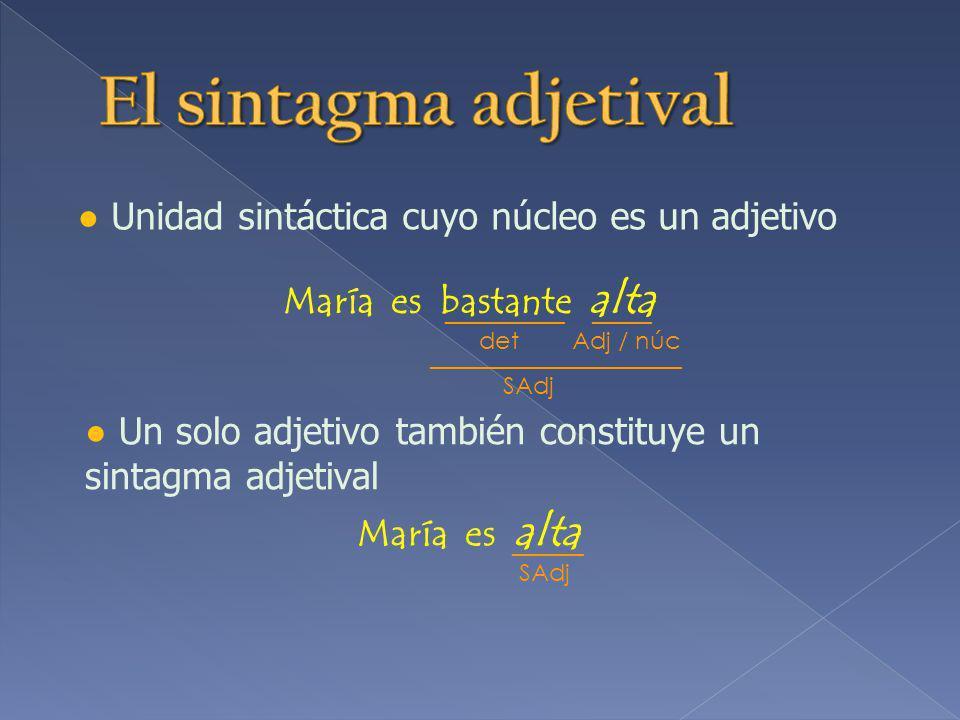Unidad sintáctica cuyo núcleo es un adjetivo María es bastante alta Un solo adjetivo también constituye un sintagma adjetival María es alta __________ _____ det Adj / núc _____________________ SAdj ______ SAdj