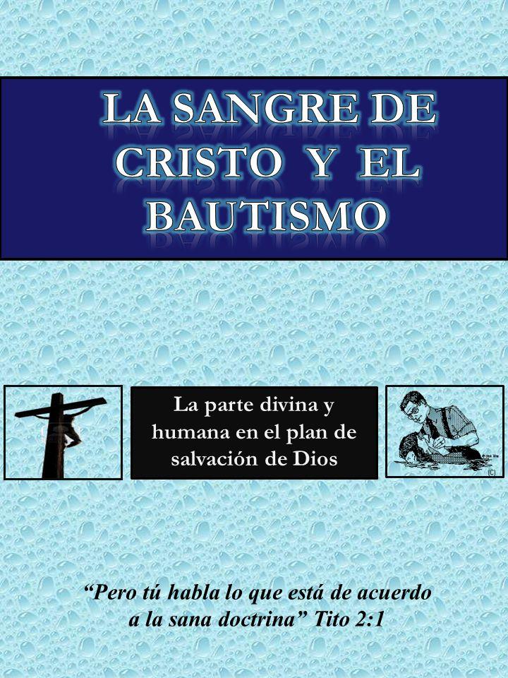 ¿Será posible que el pecador sea salvo por la sangre de Cristo sin ser bautizado para perdón de pecados conforme a Hch.