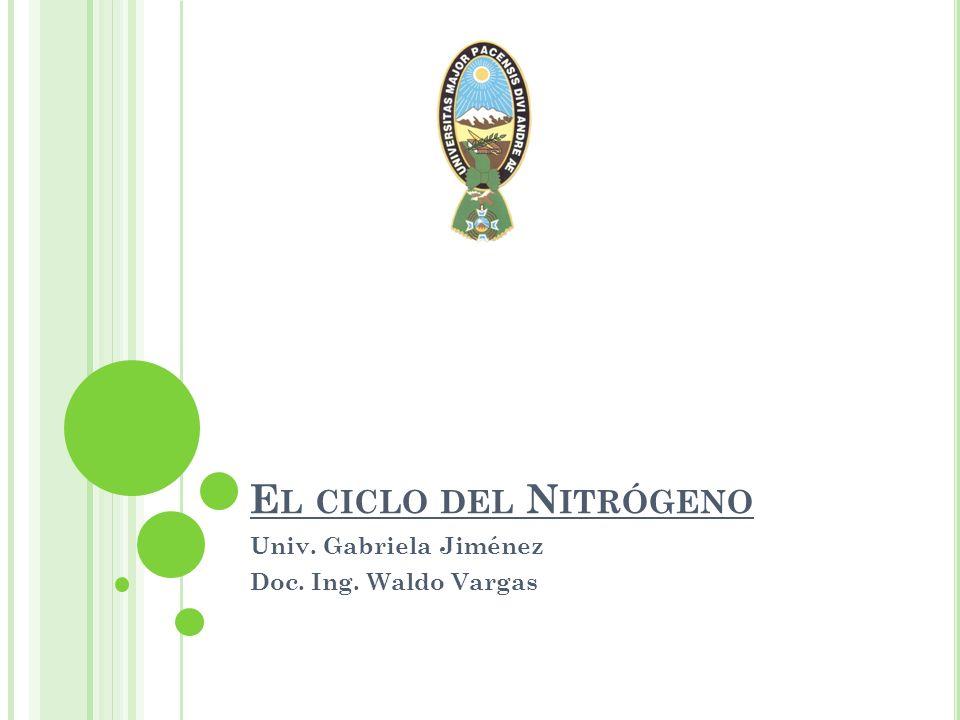 E L CICLO DEL N ITRÓGENO Univ. Gabriela Jiménez Doc. Ing. Waldo Vargas
