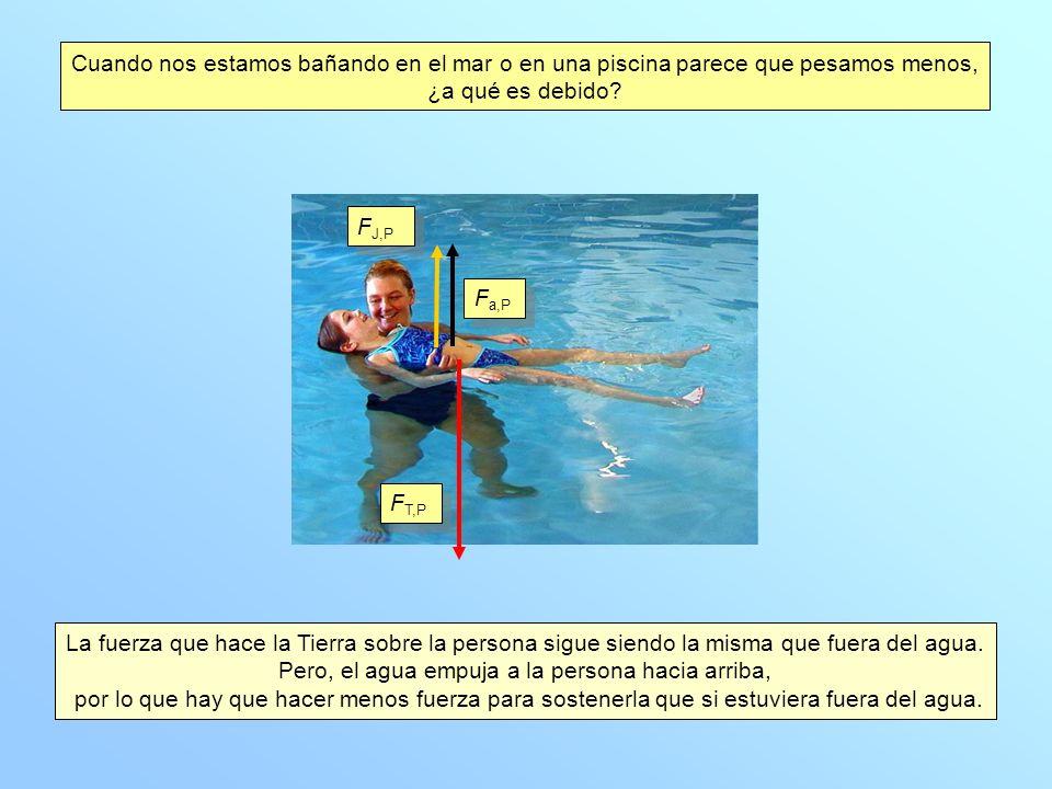 Cuando nos estamos bañando en el mar o en una piscina parece que pesamos menos, ¿a qué es debido? La fuerza que hace la Tierra sobre la persona sigue