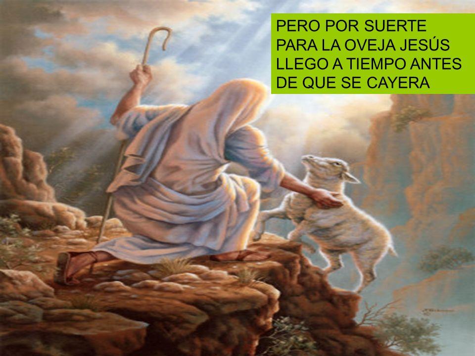PERO POR SUERTE PARA LA OVEJA JESÚS LLEGO A TIEMPO ANTES DE QUE SE CAYERA