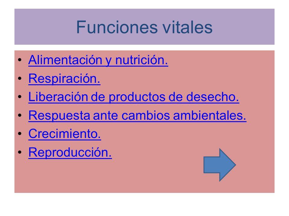 Funciones vitales Alimentación y nutrición. Respiración. Liberación de productos de desecho. Respuesta ante cambios ambientales. Crecimiento. Reproduc