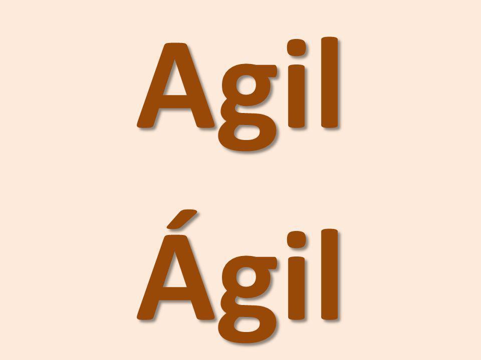 AgilÁgil