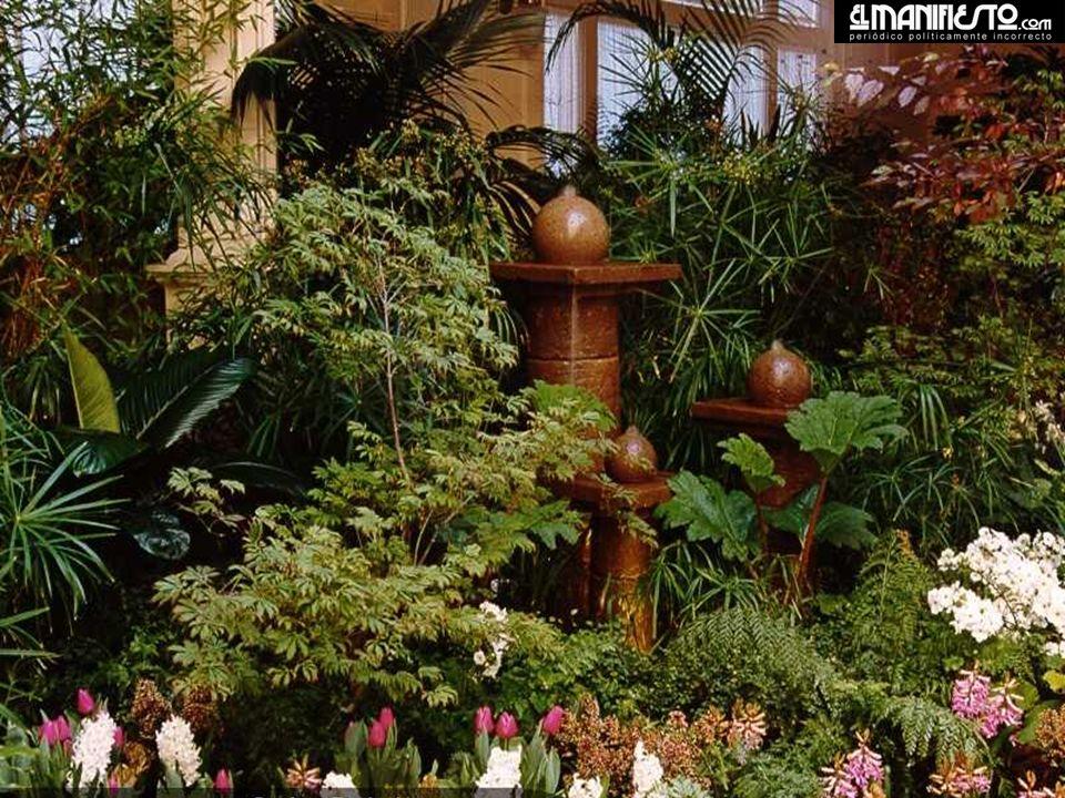 Igualmente internacional es su colección de flores y plantas, que se encuentran en su momento más vívido y hermoso entre marzo y octubre de cada año.