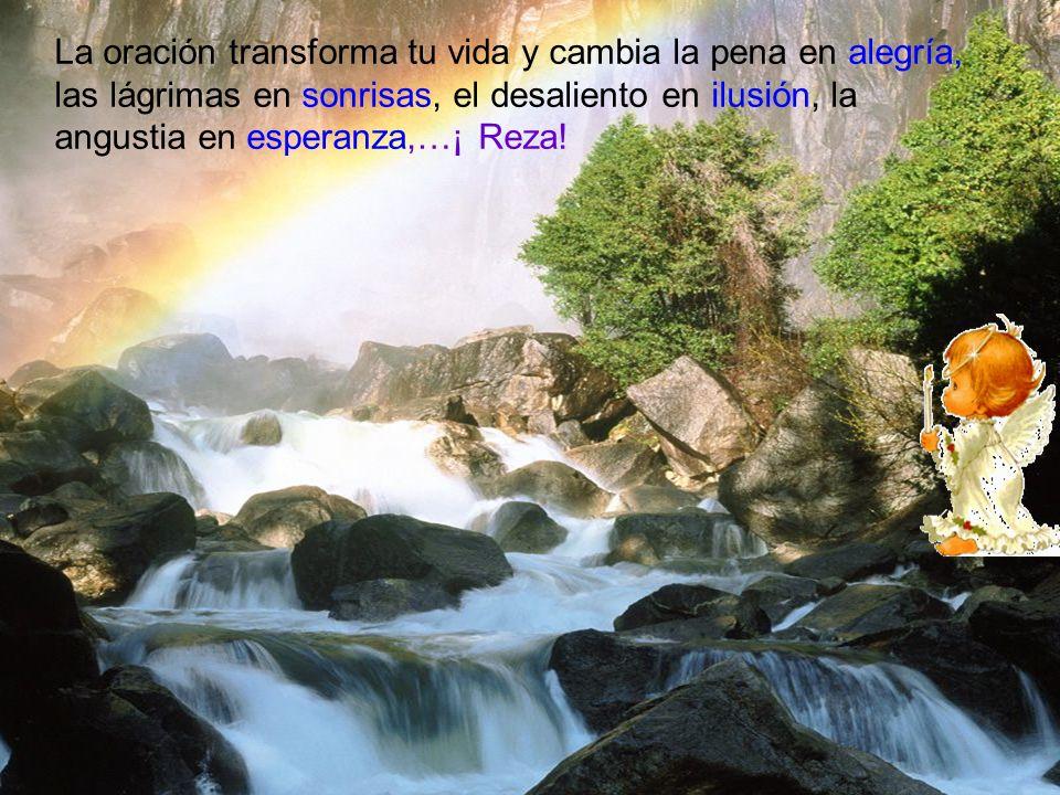 La oración transforma tu vida y cambia la pena en alegría, las lágrimas en sonrisas, el desaliento en ilusión, la angustia en esperanza,…¡ Reza!