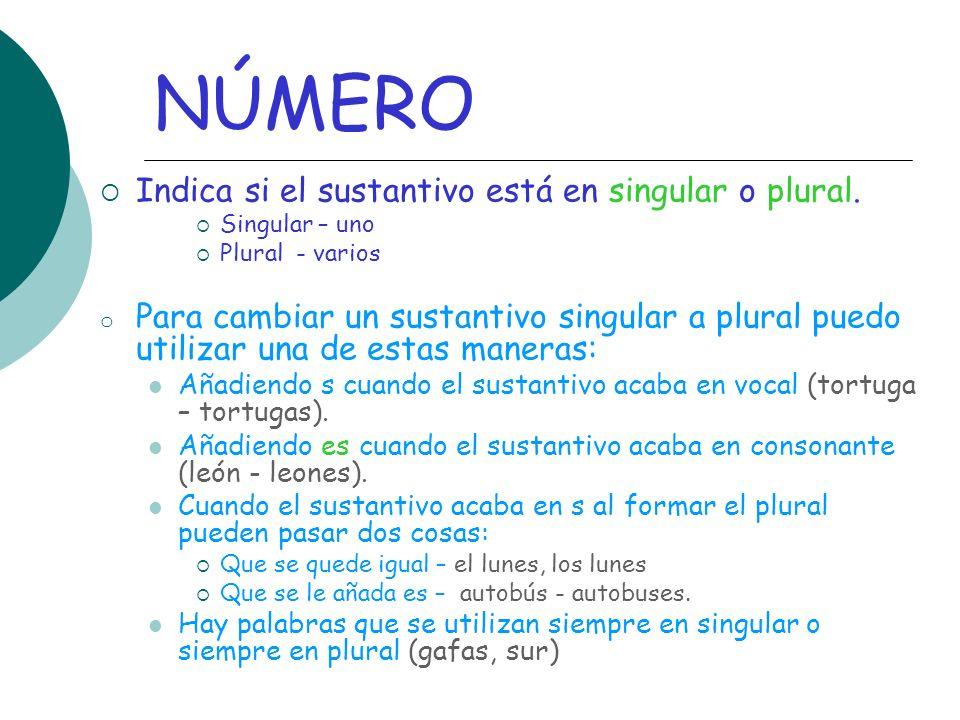 NÚMERO Indica si el sustantivo está en singular o plural. Singular – uno Plural - varios o Para cambiar un sustantivo singular a plural puedo utilizar