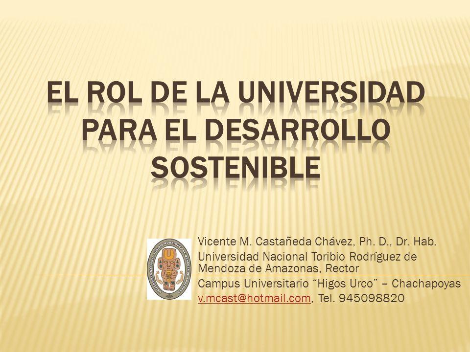 Vicente M. Castañeda Chávez, Ph. D., Dr. Hab. Universidad Nacional Toribio Rodríguez de Mendoza de Amazonas, Rector Campus Universitario Higos Urco –