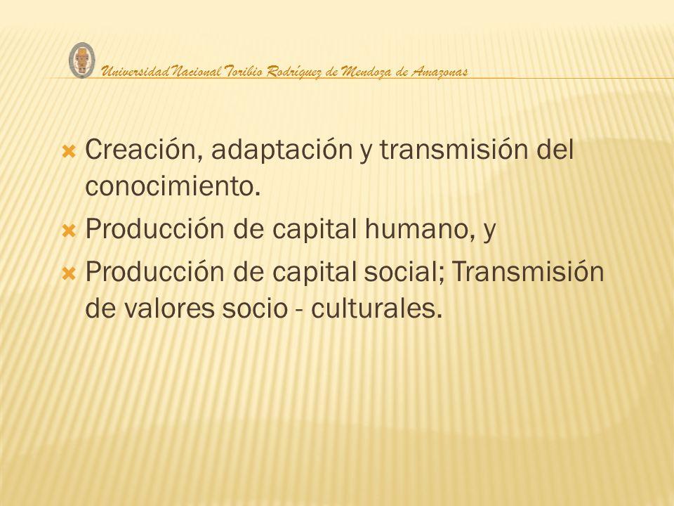 Creación, adaptación y transmisión del conocimiento. Producción de capital humano, y Producción de capital social; Transmisión de valores socio - cult