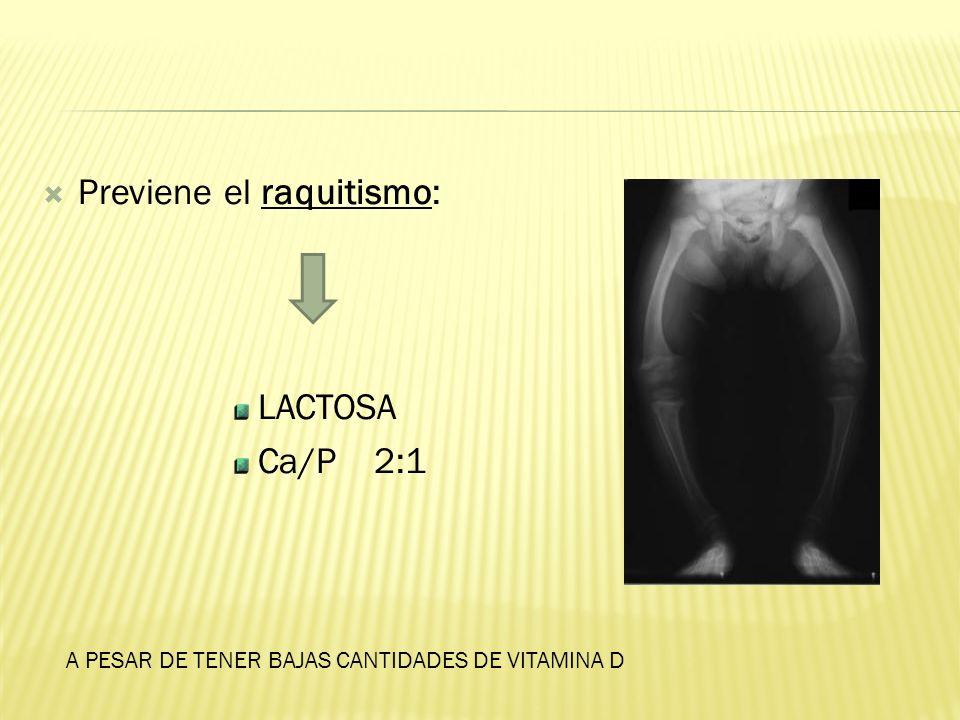Previene el raquitismo: LACTOSA Ca/P 2:1 A PESAR DE TENER BAJAS CANTIDADES DE VITAMINA D