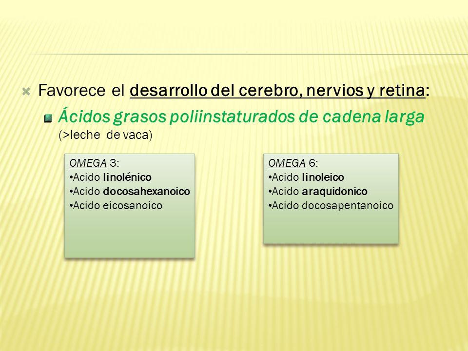 Favorece el desarrollo del cerebro, nervios y retina: Ácidos grasos poliinstaturados de cadena larga (>leche de vaca) OMEGA 3: Acido linolénico Acido docosahexanoico Acido eicosanoico OMEGA 3: Acido linolénico Acido docosahexanoico Acido eicosanoico OMEGA 6: Acido linoleico Acido araquidonico Acido docosapentanoico OMEGA 6: Acido linoleico Acido araquidonico Acido docosapentanoico