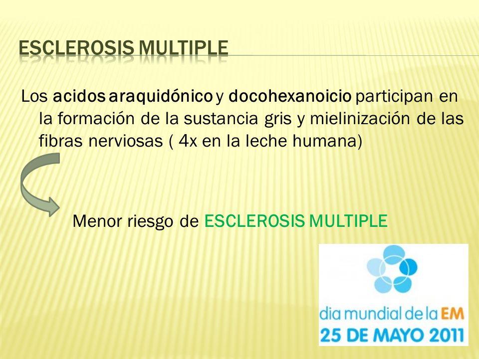 Los acidos araquidónico y docohexanoicio participan en la formación de la sustancia gris y mielinización de las fibras nerviosas ( 4x en la leche humana) Menor riesgo de ESCLEROSIS MULTIPLE