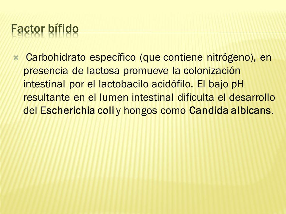 Carbohidrato específico (que contiene nitrógeno), en presencia de lactosa promueve la colonización intestinal por el lactobacilo acidófilo. El bajo pH
