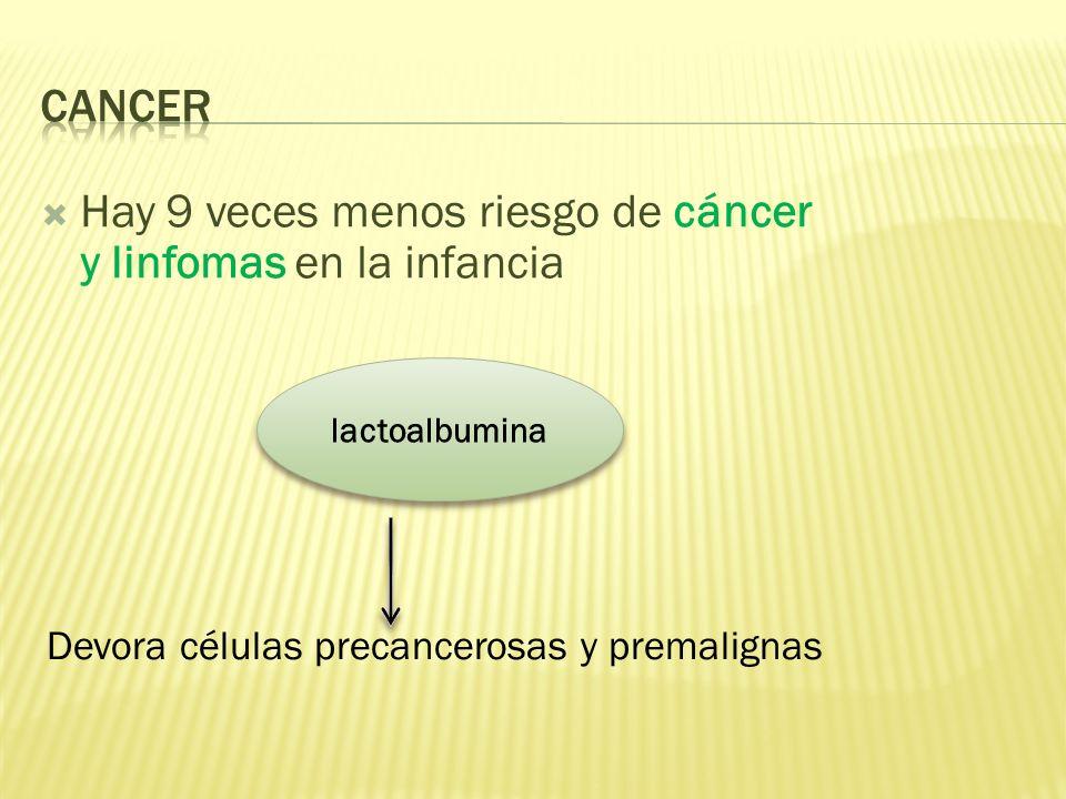 Devora células precancerosas y premalignas Hay 9 veces menos riesgo de cáncer y linfomas en la infancia lactoalbumina