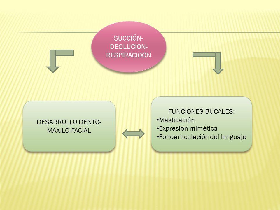 SUCCIÓN- DEGLUCION- RESPIRACIOON DESARROLLO DENTO- MAXILO-FACIAL FUNCIONES BUCALES: Masticación Expresión mimética Fonoarticulación del lenguaje FUNCI