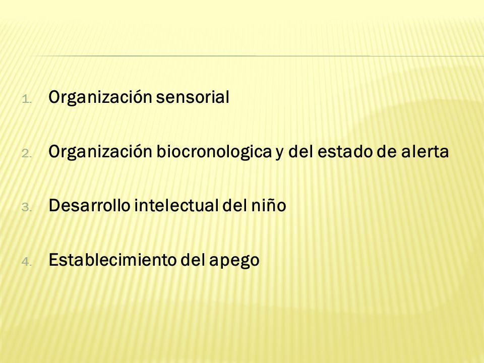 1. Organización sensorial 2. Organización biocronologica y del estado de alerta 3. Desarrollo intelectual del niño 4. Establecimiento del apego