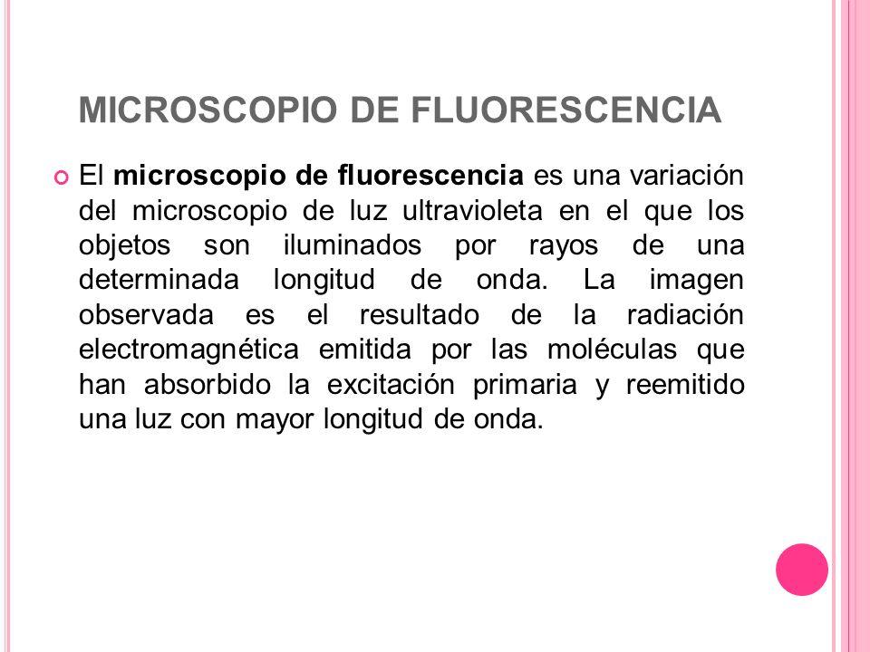 MICROSCOPIO DE FLUORESCENCIA El microscopio de fluorescencia es una variación del microscopio de luz ultravioleta en el que los objetos son iluminados