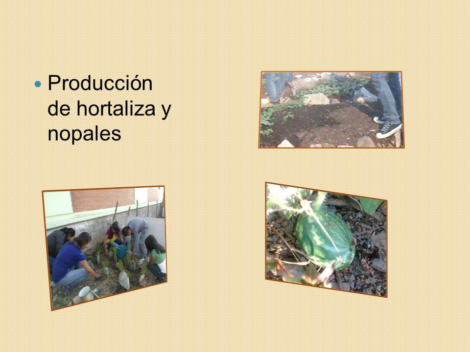 Producción de hortaliza y nopales