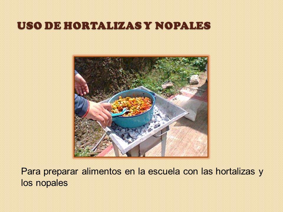 USO DE HORTALIZAS Y NOPALES Para preparar alimentos en la escuela con las hortalizas y los nopales