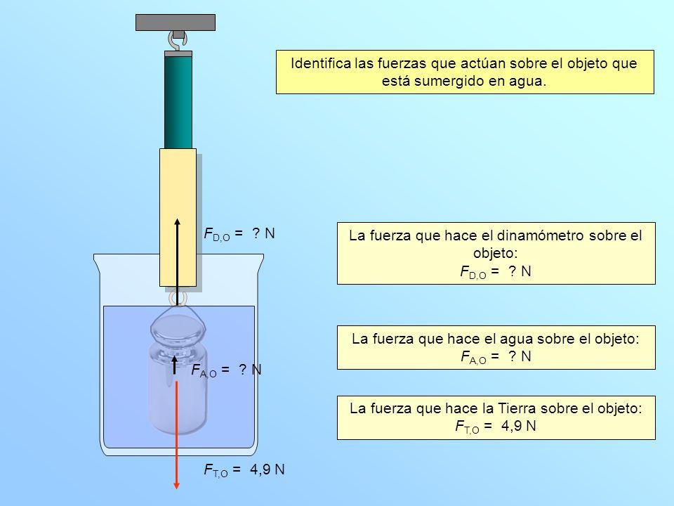 N 1 2 3 4 5 Identifica las fuerzas que actúan sobre el objeto que está sumergido en agua.