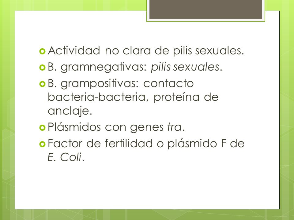 Actividad no clara de pilis sexuales.B. gramnegativas: pilis sexuales.