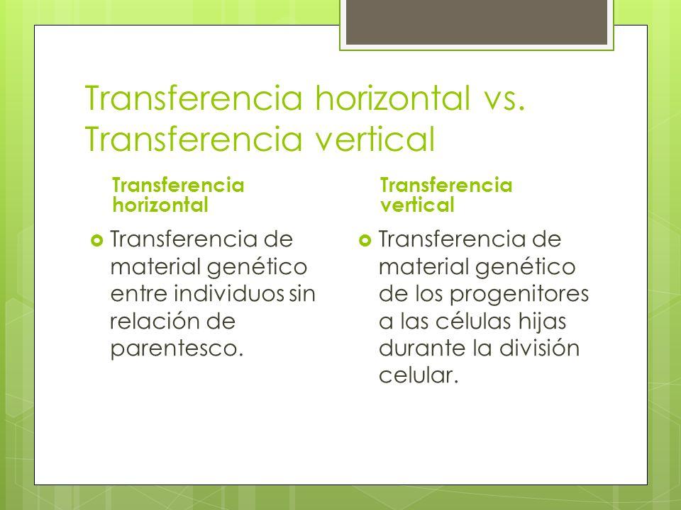 Transferencia horizontal vs.