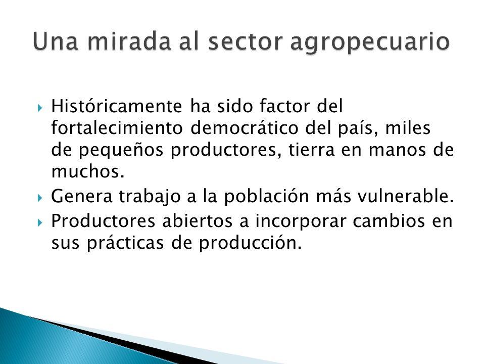 Históricamente ha sido factor del fortalecimiento democrático del país, miles de pequeños productores, tierra en manos de muchos. Genera trabajo a la