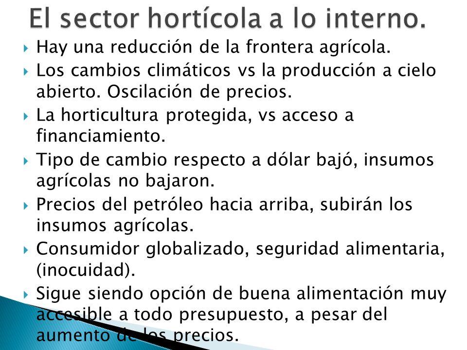 Hay una reducción de la frontera agrícola. Los cambios climáticos vs la producción a cielo abierto. Oscilación de precios. La horticultura protegida,