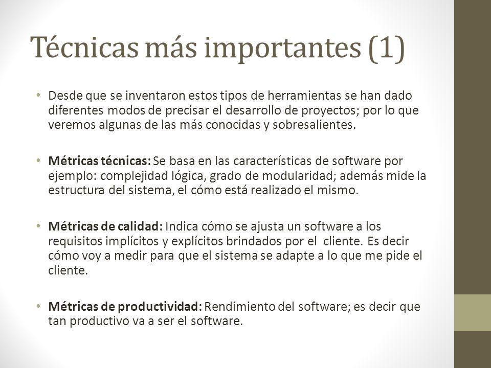 Técnicas más importantes (1) Desde que se inventaron estos tipos de herramientas se han dado diferentes modos de precisar el desarrollo de proyectos;
