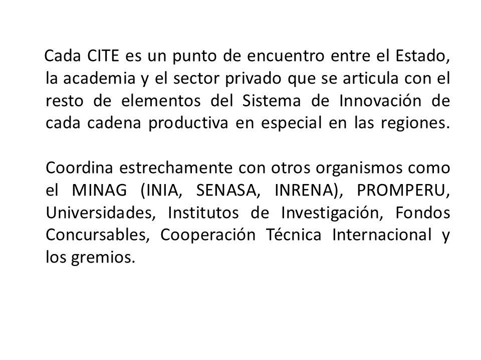 Cada CITE es un punto de encuentro entre el Estado, la academia y el sector privado que se articula con el resto de elementos del Sistema de Innovació