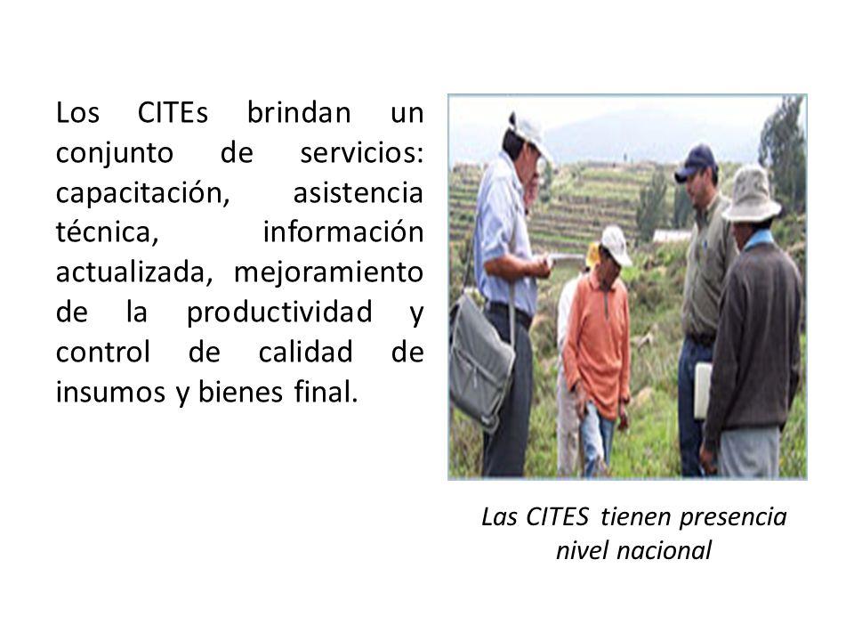 Los CITEs brindan un conjunto de servicios: capacitación, asistencia técnica, información actualizada, mejoramiento de la productividad y control de c