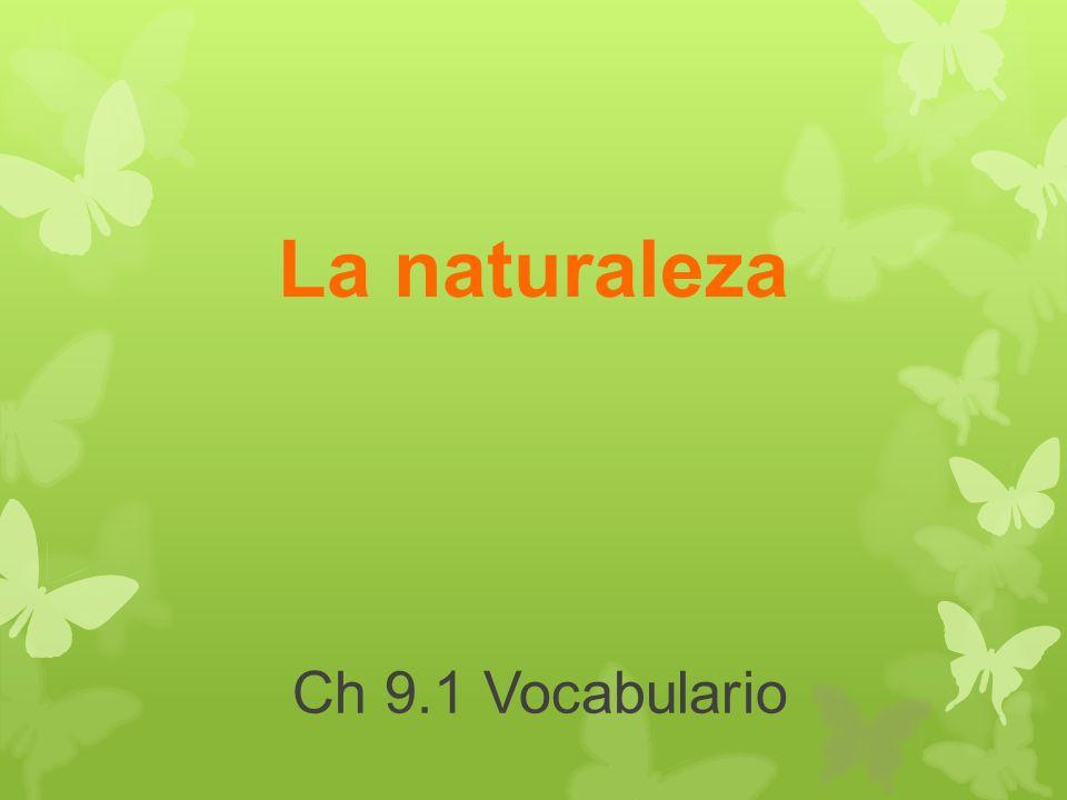Ch 9.1 Vocabulario La naturaleza