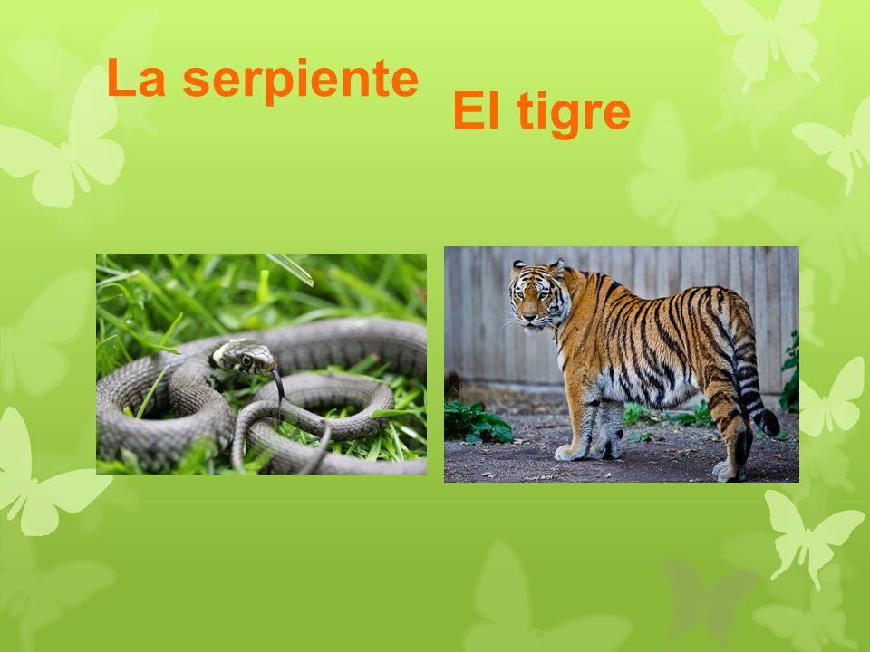 La serpiente El tigre