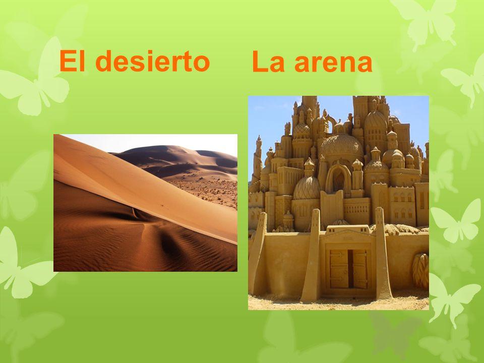 El desierto La arena