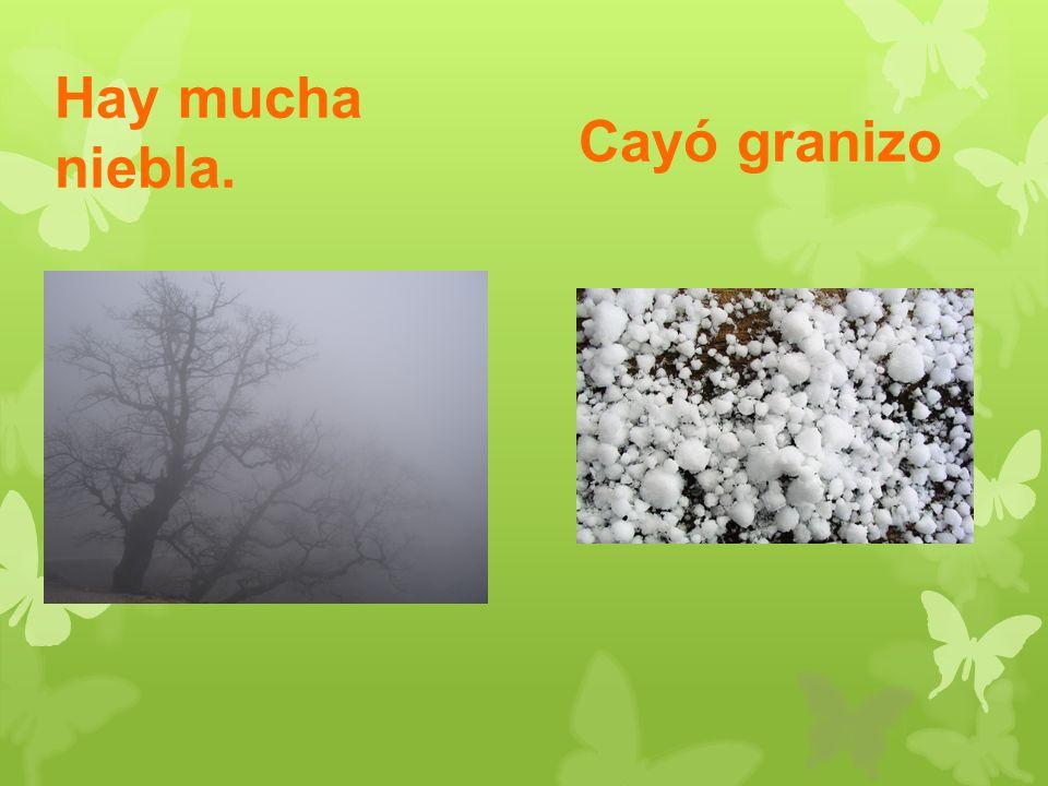 Hay mucha niebla. Cayó granizo