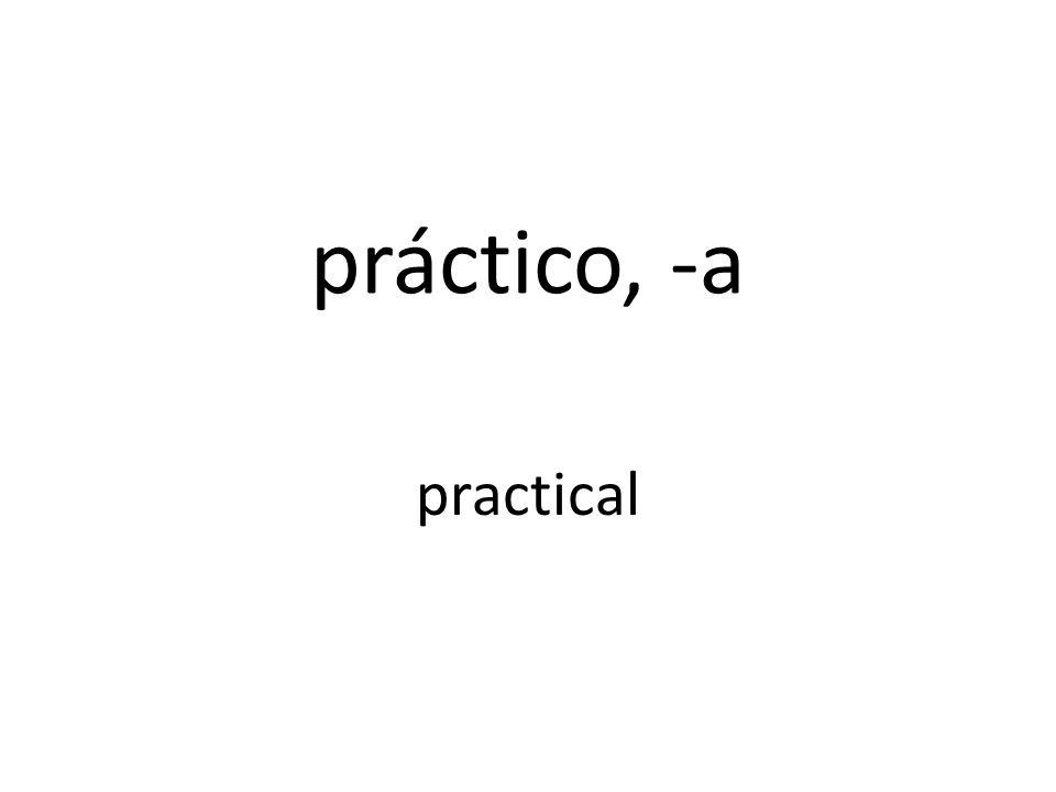 práctico, -a practical